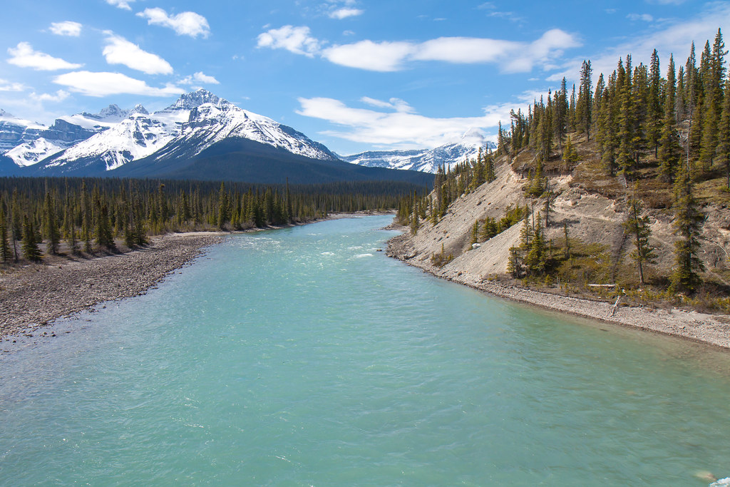 Banff National Park, Saskatchewan River