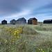 Winterton on Sea Sheds by norfolklandscapephotography