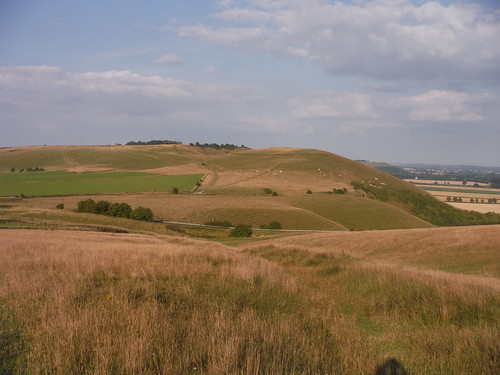 Knap Hill from Walkers Hill