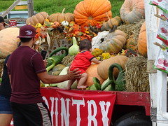 Kula Country Farm Pumpkin Patch on Maui, James Brennan Hawaii (1)