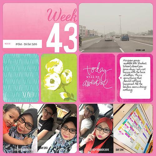 Week 43a-web