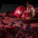Pomegranate on Cut Velvet by suzanne~