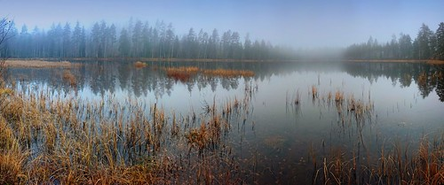 camera panorama mist lake fog finland phone sony jaala xperia ahvenlampi