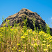 Small photo of Rajgad Fort