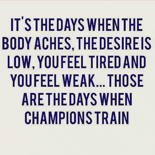 the day that champions train