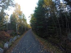 The B.L.T. Trail