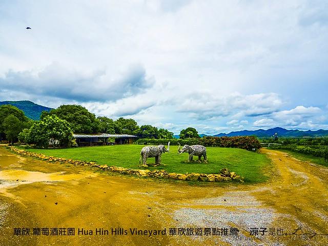 華欣 葡萄酒莊園 Hua Hin Hills Vineyard 華欣旅遊景點推薦 66