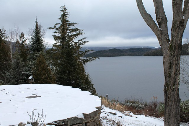 Winter Views from the Association's shared stone patio.