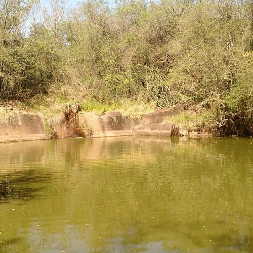 Lago da origem.
