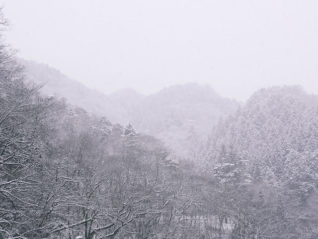 Lumix GH3 Tokyo | 03