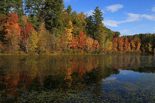 autumn lake reflection fall nature river landscape virginia pond fallcolors shoreline slate buckingham backwater