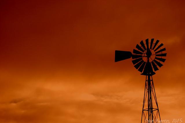 Molino de viento / Windmill