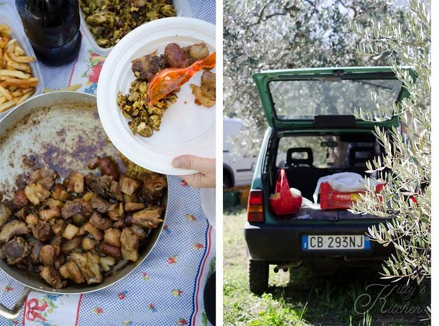 olive raccolta 2015-3