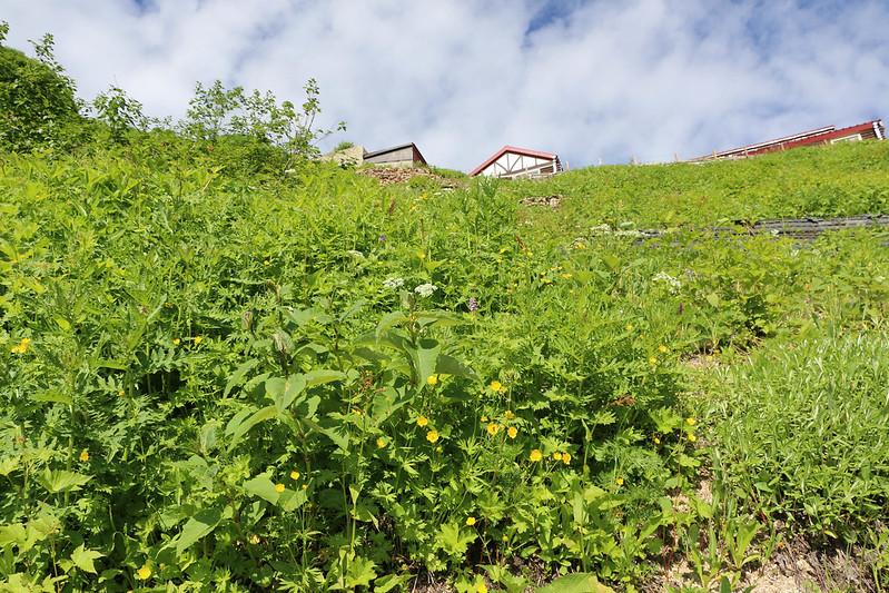 2014-08-02_00376_燕岳.jpg