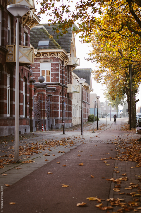 Amsterdam, Autumn in Oost