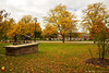 Orchard Park Library in the Fall (DTB_4906)