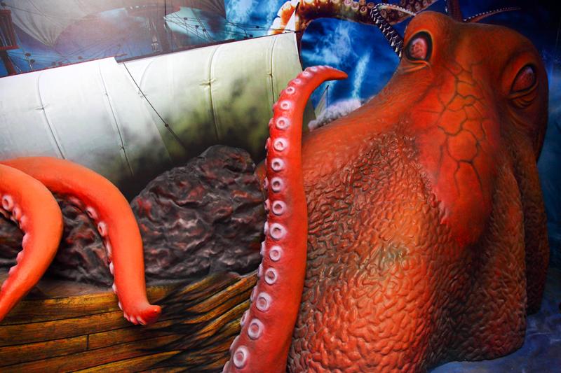 3D-Octopus