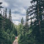 Redheart Creek trail