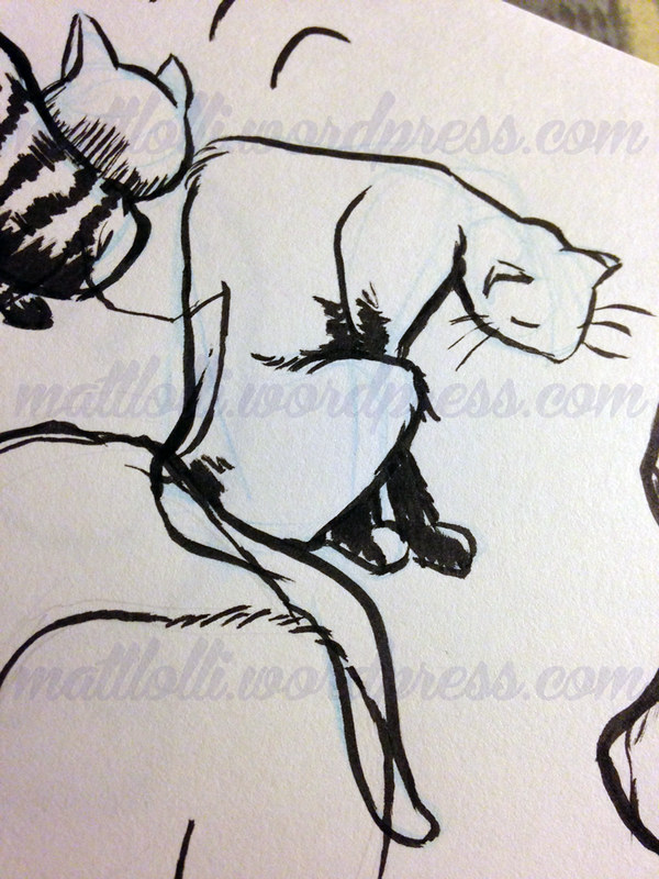 Matt Lolli Cat Sketch