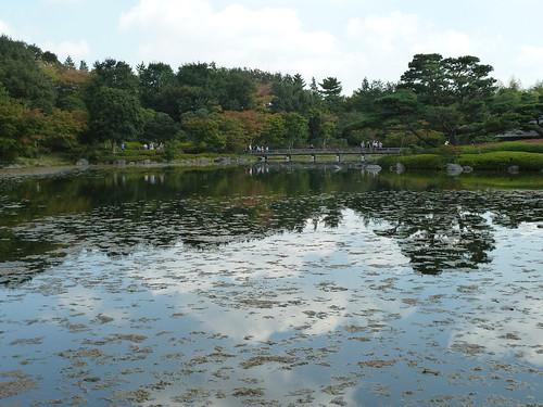 日本庭園 池 昭和記念公園