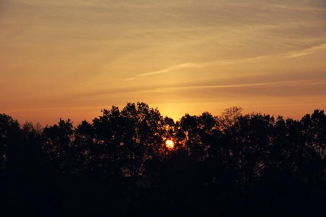 new day, Zittau, DE