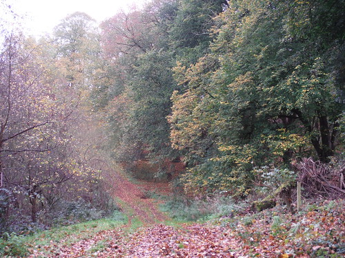 Undulating Route up to the Greensand Ridge (II)
