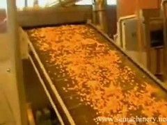 Cereal Flake Conveyor Belt Image 112415