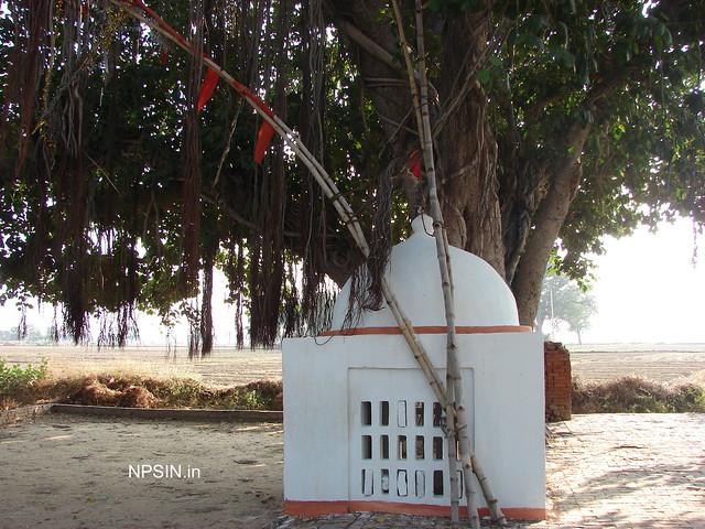 Shri Hanuman Ji Dham