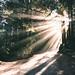 Morning Rays by EzekielGonzalez