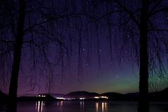 Aurora Borealis - December 2015 - 4