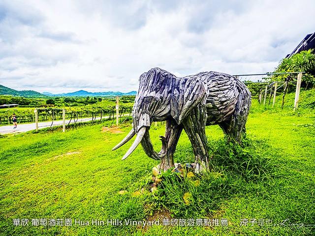 華欣 葡萄酒莊園 Hua Hin Hills Vineyard 華欣旅遊景點推薦 39