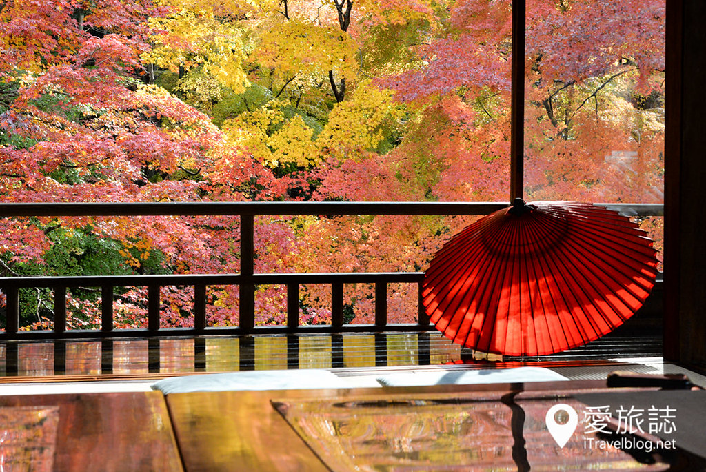 京都赏枫景点 琉璃光院 30