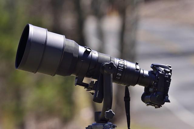 _JIM4883_jpg---Nikon 400 f/2.8, Nikon +2 Converter