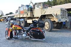 Motorcycle Harley Davidson 1994 Heritage Softail Army Surplus Jade 20151008_7693
