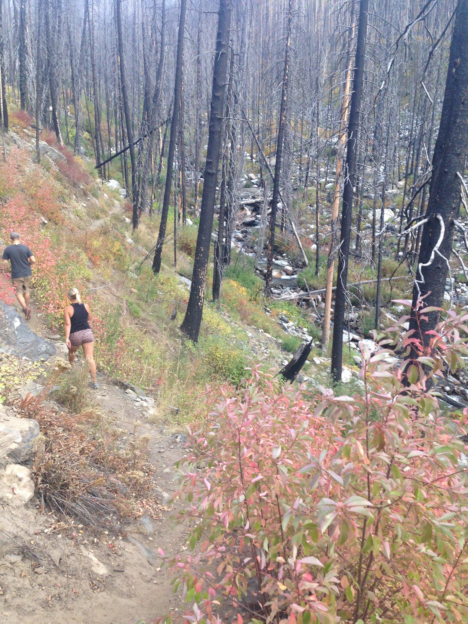 Deep Creek Hike