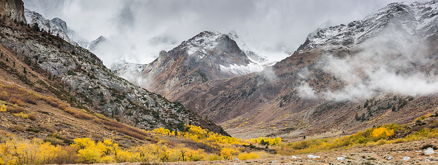Eastern High Sierra Fall Color