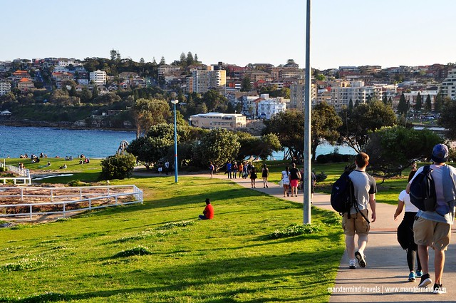 Coastal Walk to Coogee