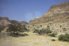 Dead Sea & Jordan Rift Valley 018