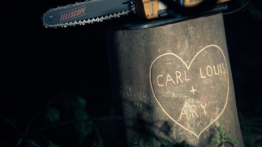 Carl Louis + ARY - P3 Gull 2015