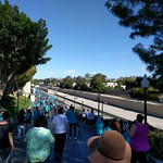 Walk for Food Allergy / LA River