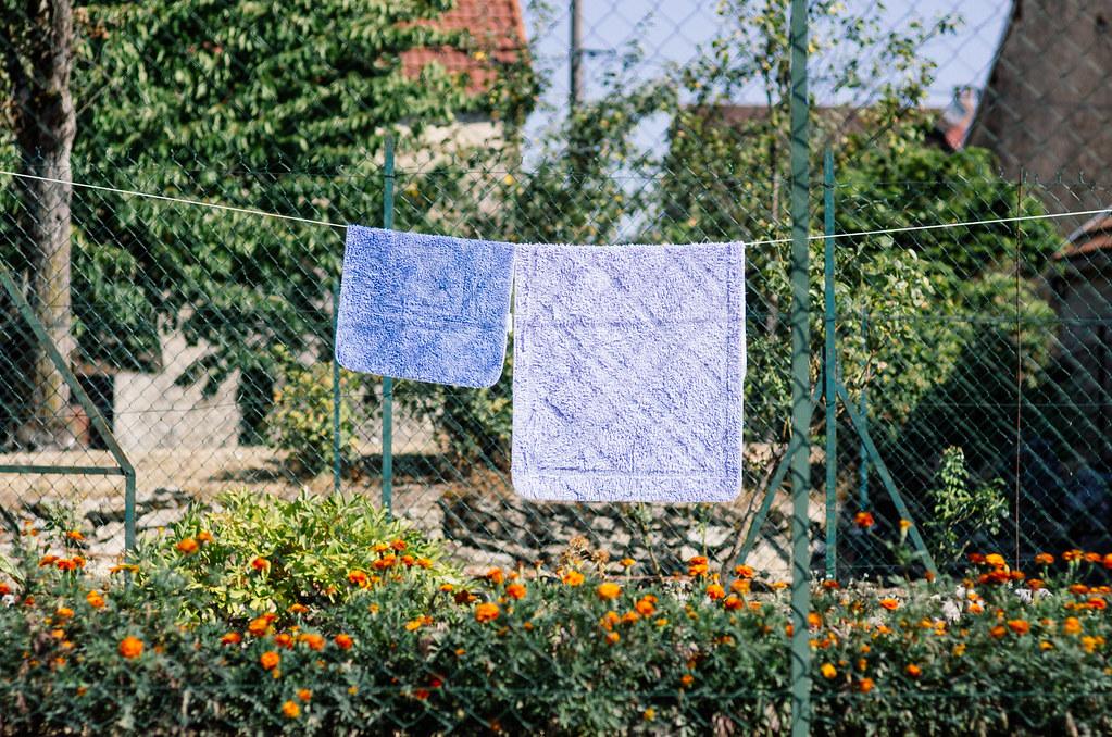 Dans l'Aube, chemins de Compostelle et via Francigena  - Carnet de voyage en France - À la campagne