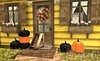 Lovely Pumpkins from Imeka for Mix