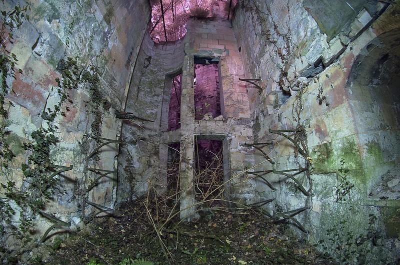 Chateau de la Mothe-Chandeniers dawn chorus