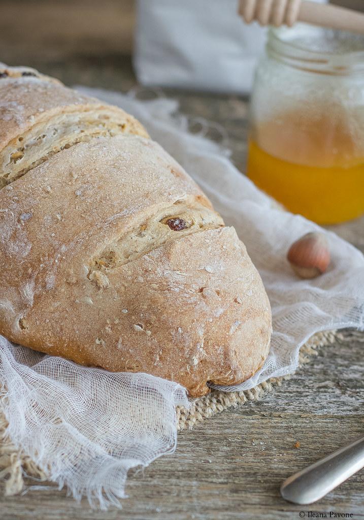 Pane al miele, nocciole e uvetta4