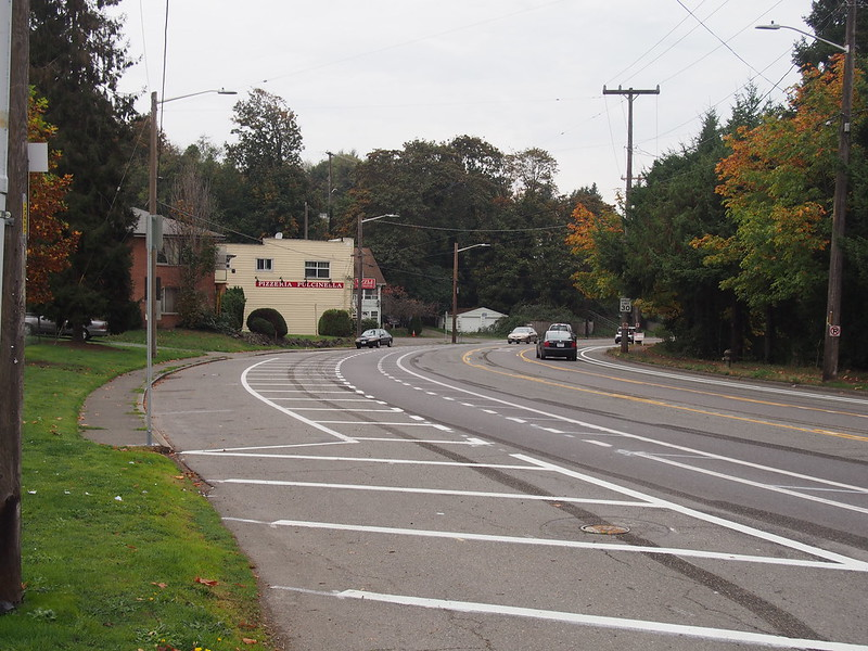 Rainier Avenue S: The bike lanes have been getting significant upgrades!