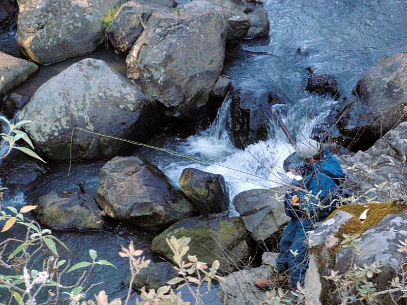 Pescando en cascada