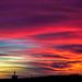 Pink Skies - November 2015 by Cloudwhisperer67