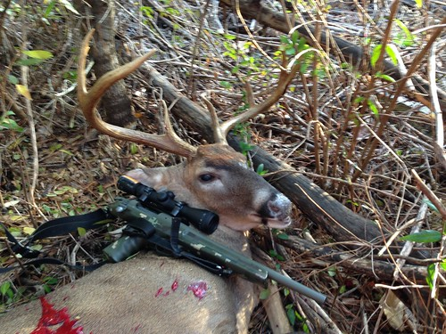 What is your deer rifle set up? | Page 5 | TigerDroppings com