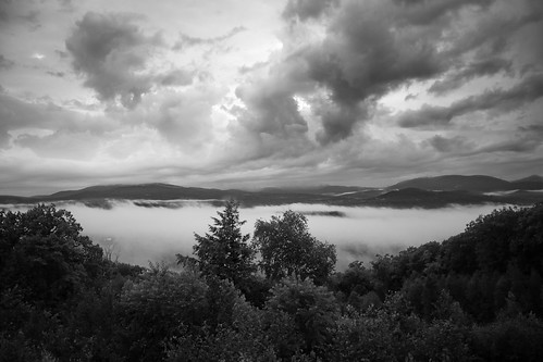 blackandwhite bw tree monochrome fog clouds newhampshire whitemountains