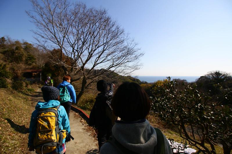 20150211-曽我丘陵-0051.jpg